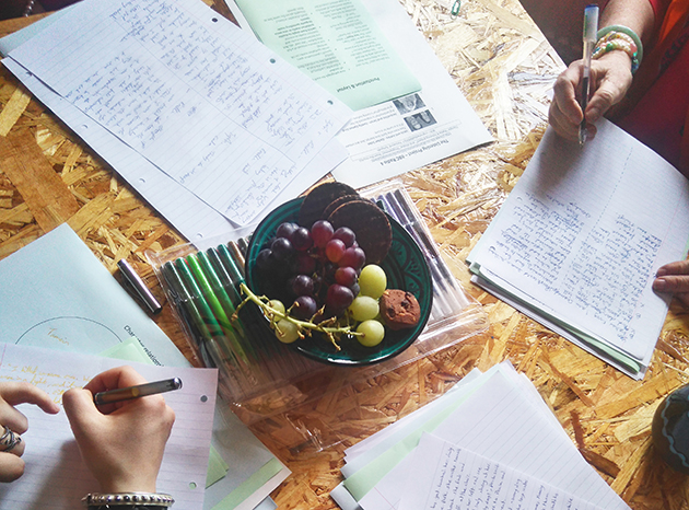 Grapes and handouts on a table