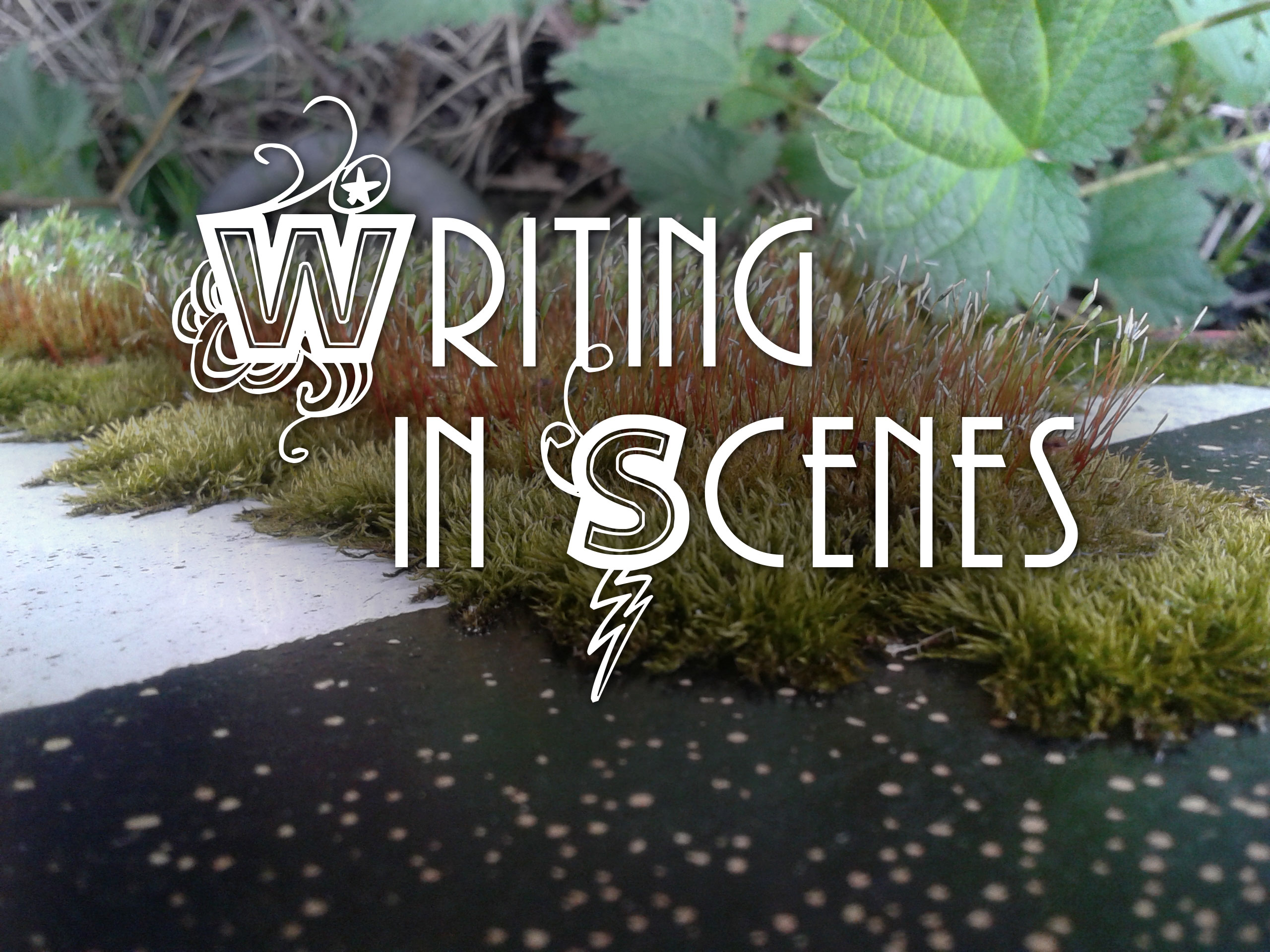 The Writng in Scenes writing workshop