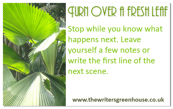 Stop while you know what happens next. Leave yourself a few notes or write the first line of the next scene.